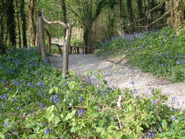 Amberley Museum - Nature trail