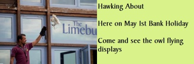 Monday 1st May Bank Holiday with Hawking About