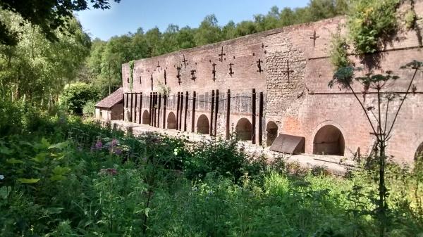 De Witt Kilns