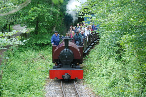 Amberley Museum - Have fun riding the narrow gauge railway