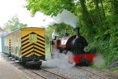Ride the narrow gauge railway around the site