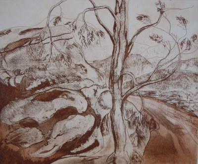Hunter Valley, 1995, 14/60, Etching Monochrome, 43.5 x 53.5cm, $400