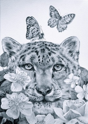 Be Still, Drawing, pencil on paper, 29 x 42cm, $850