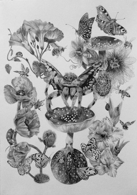 The tangled webb we weave, Drawing, Pencil on paper, 29 x 42cm, $1.220