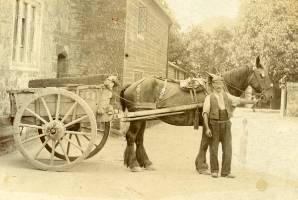 Bill Whitman with horse & cart (c1920)