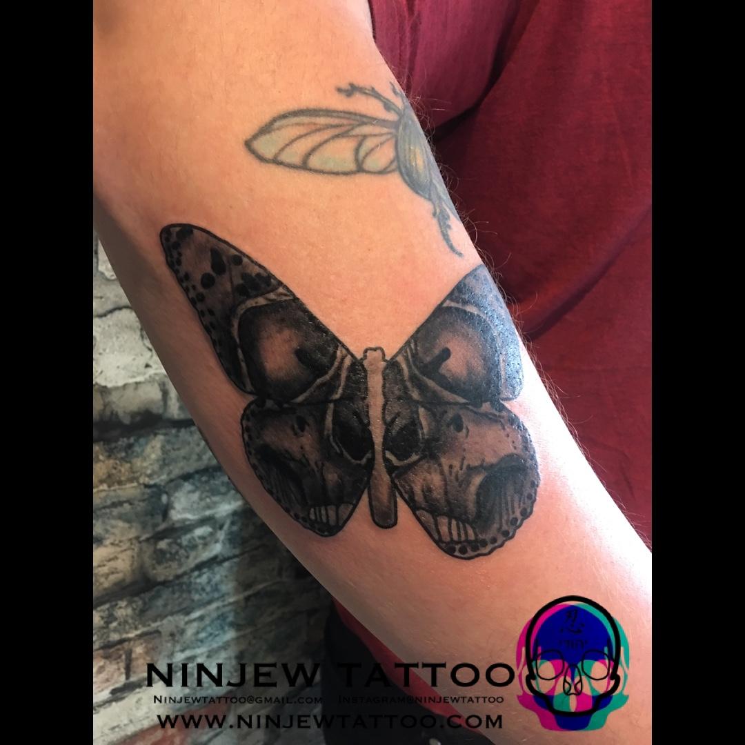 Skull Butterfly Skullerfly