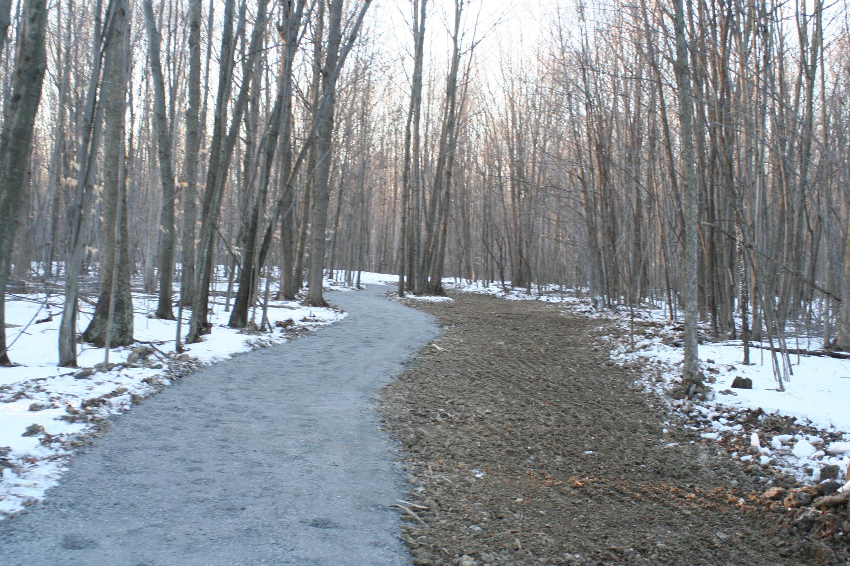 trails_new