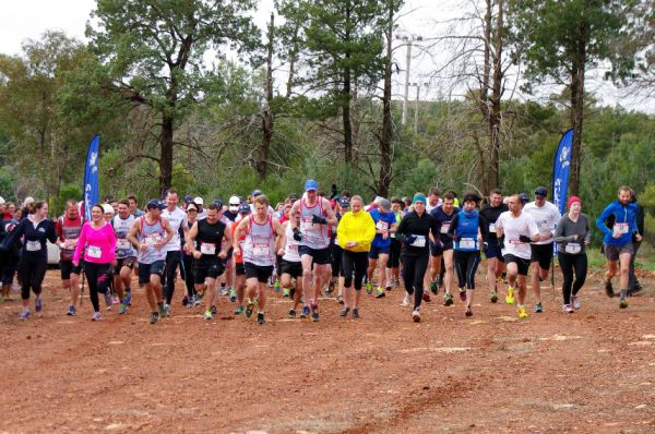 Half on the Hill 2014 026
