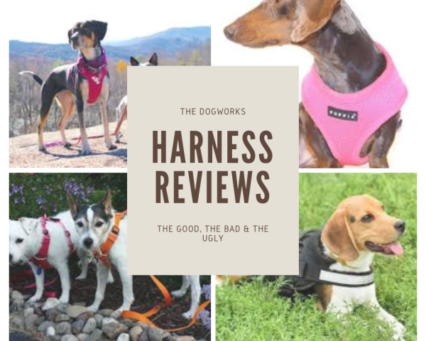 Harnesses - the good, the bad & the ugly