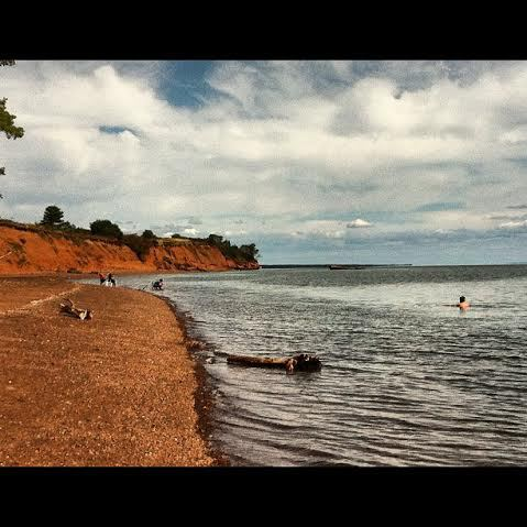 Swimming in the Bay of Fundy