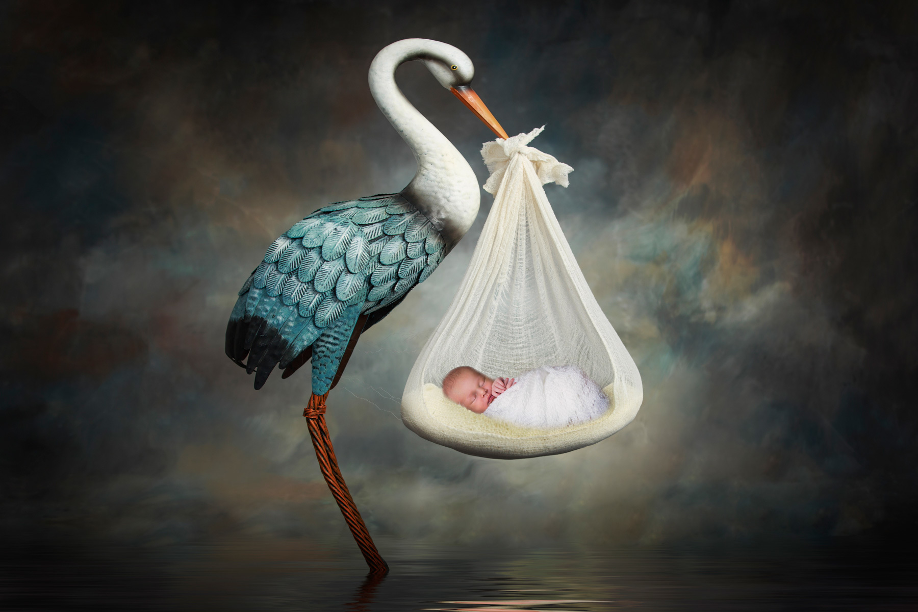 stork, newborn, baby, storks, boy,