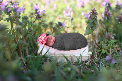 Newborn photographer; newborn baby, baby photographer calgary, anne geddes style, fairytale portrait newborn