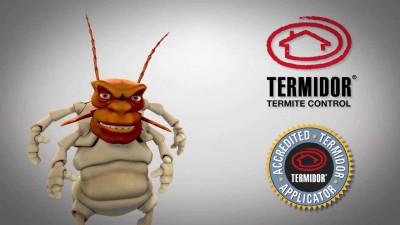 termidor termite control applicator