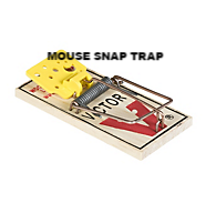 mouse snap trap