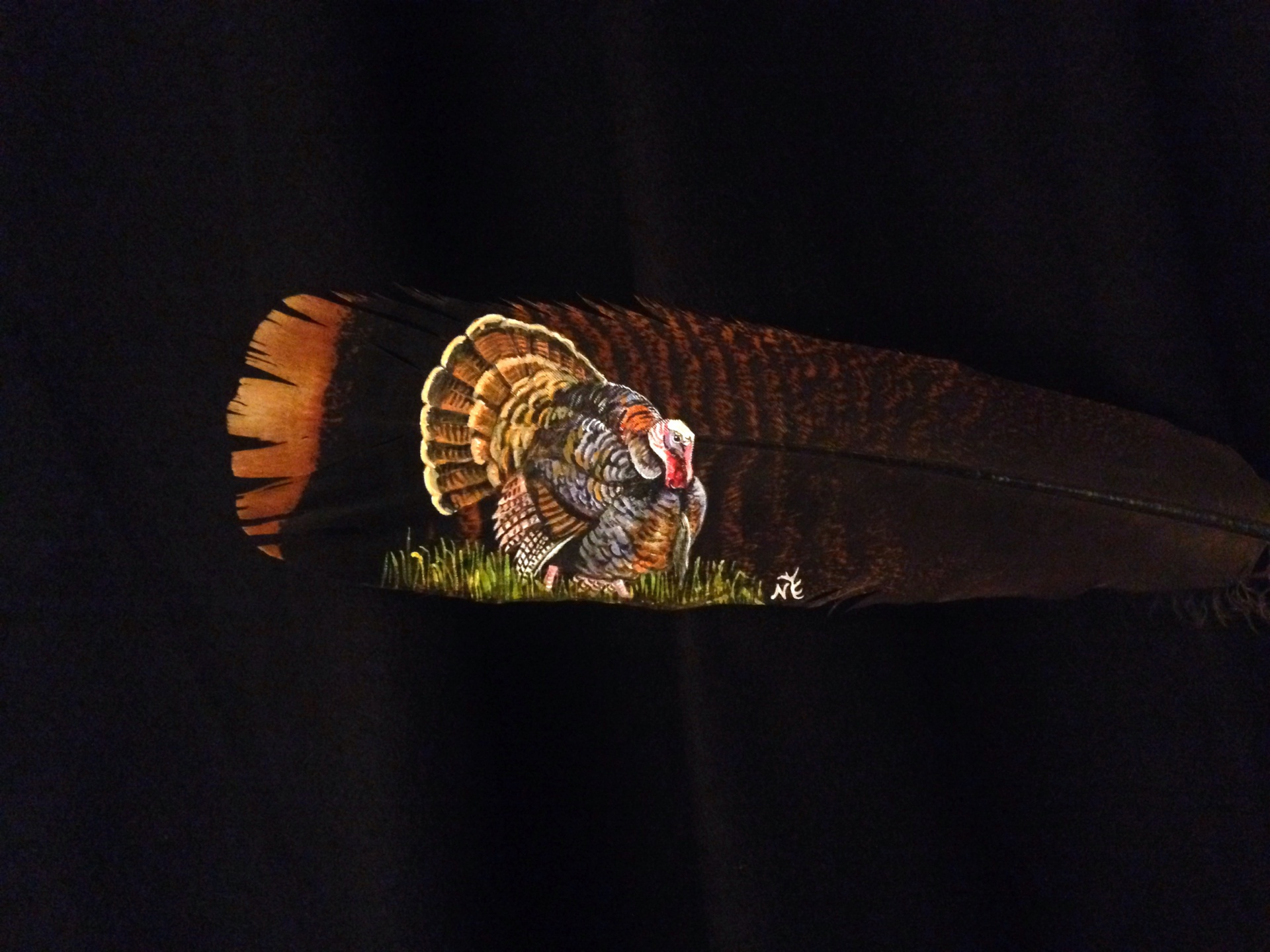 a favorite.... Turkey on a Turkey feather