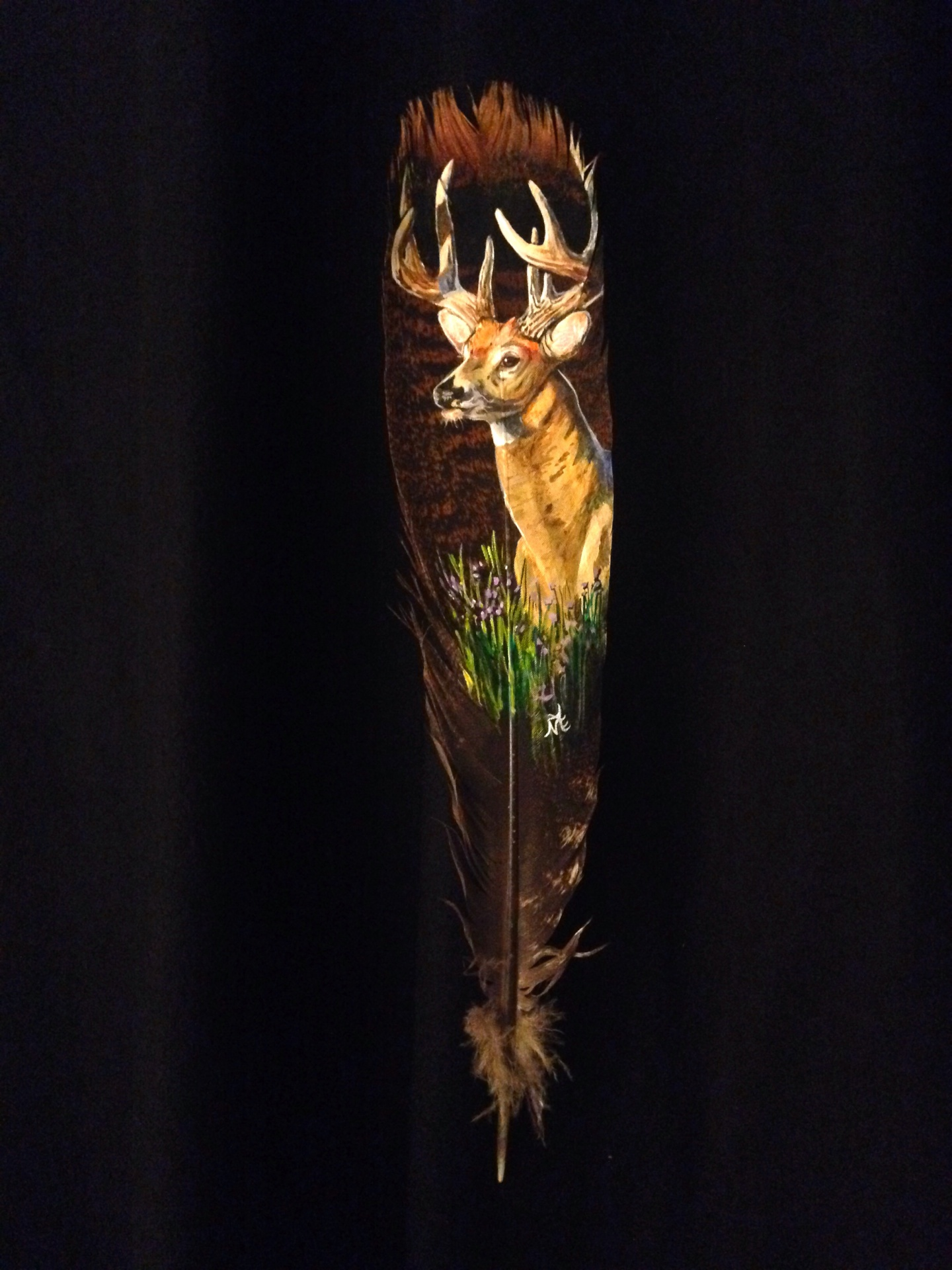Donated feather
