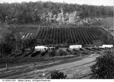 perth hills history