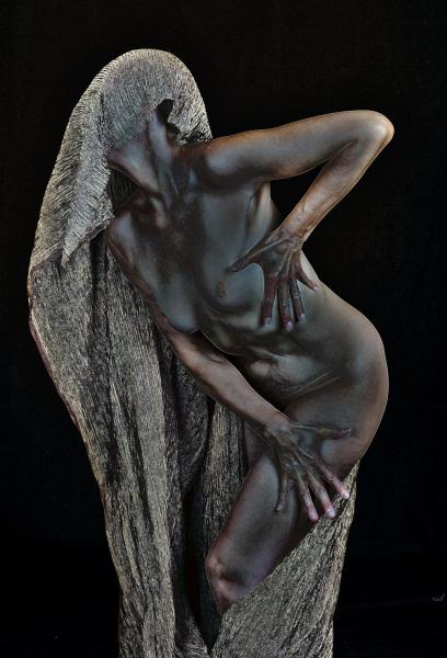 Anonymous Photographer: Steve Clarke
