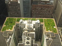City Green Roofs