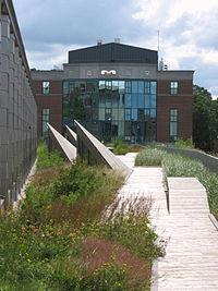 Green Roof Gardens