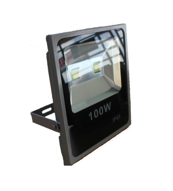 Floodlight Slim G-LFLS-TC100W