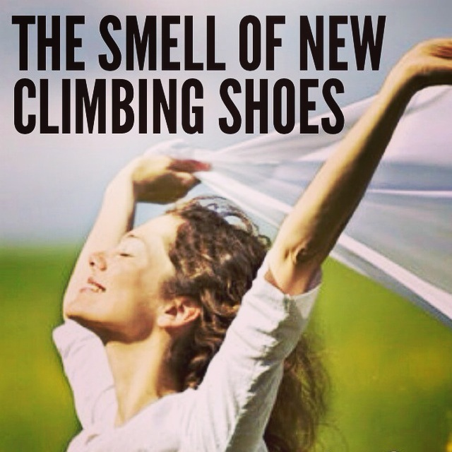 http://news.nationalgeographic.com/2015/01/150114-climbing-yosemite-caldwell-jorgeson-capitan/