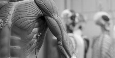 Sports Physician and Orthopaedics