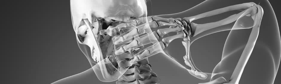 Chiropractor Chiropractic Mississauga