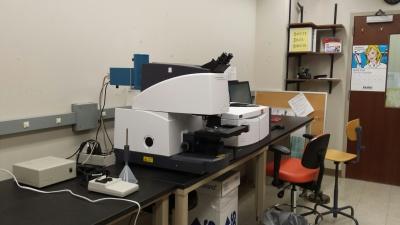 FTIR microscopy