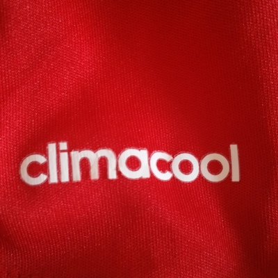climacool detail