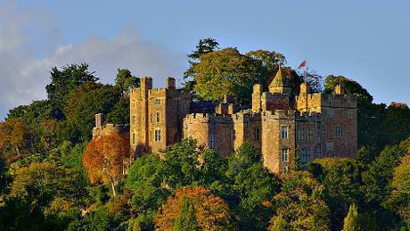 Dunster Castle NT