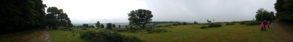 Panorama view on Aisholt Common