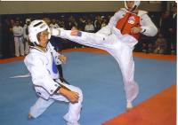 karate schools in monument