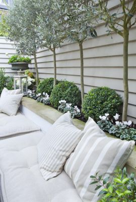 Compact garden ticking all the great design boxes