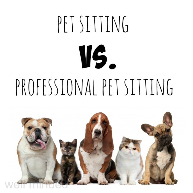 What is a Professional Pet Sitter?