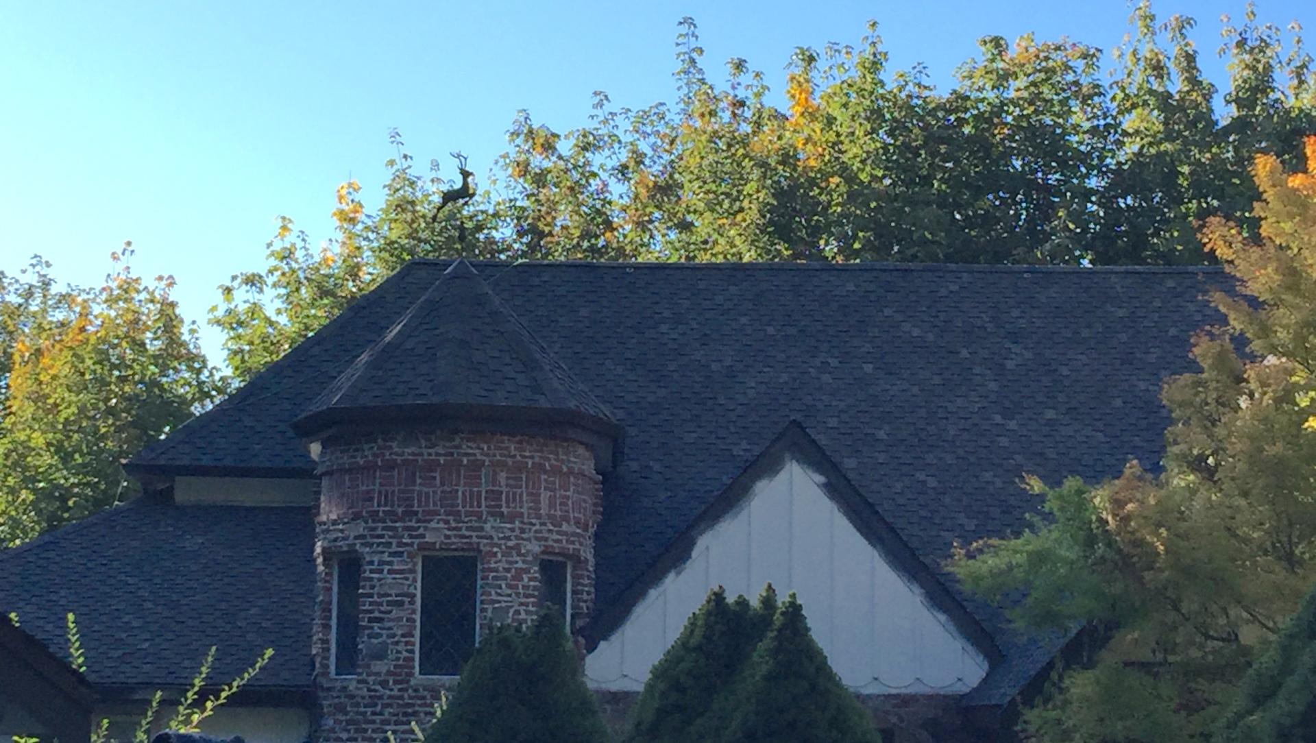 Roofing Company Gig Harbor, WA