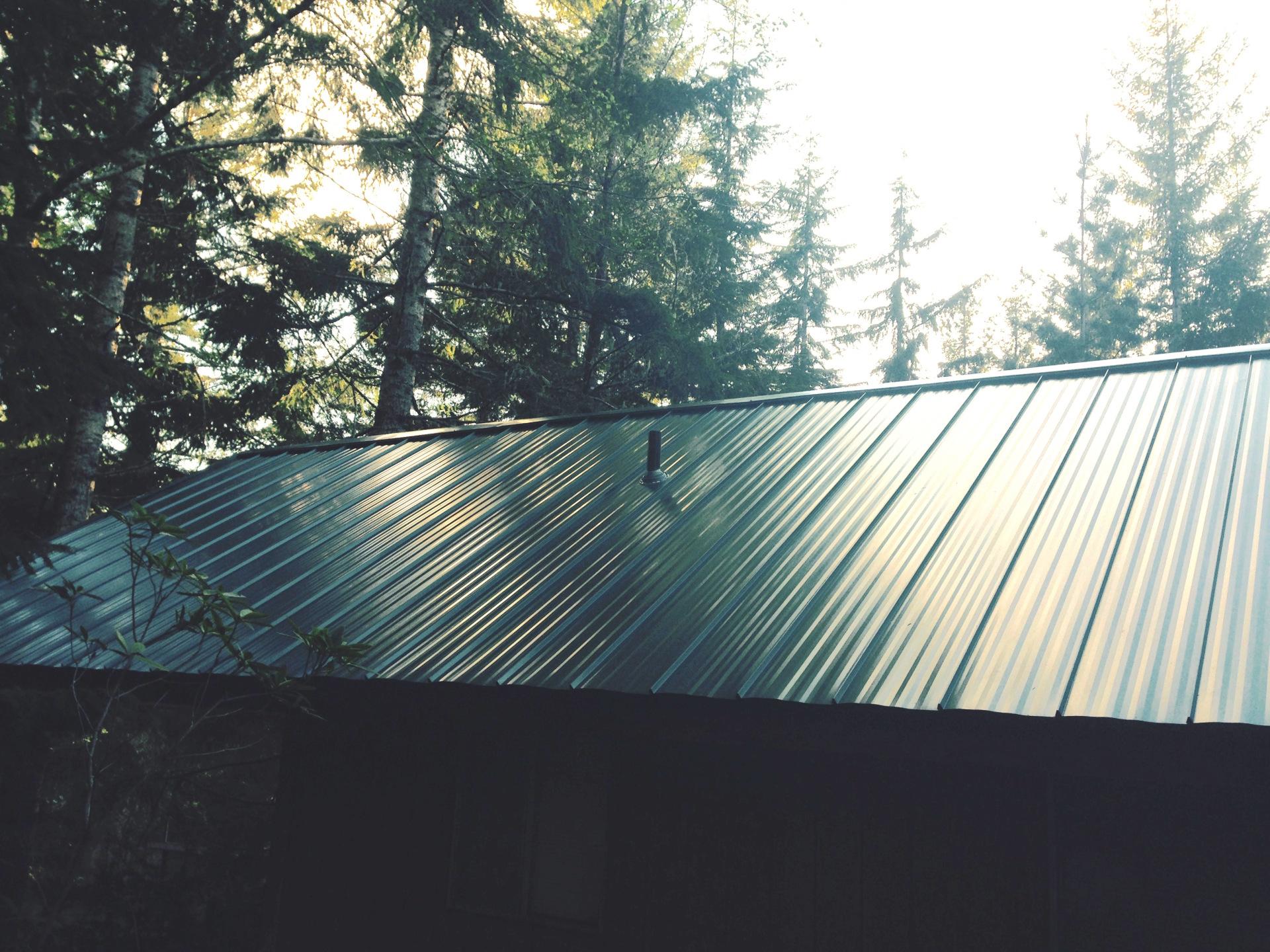 Metal Roofs Liliwaup, WA