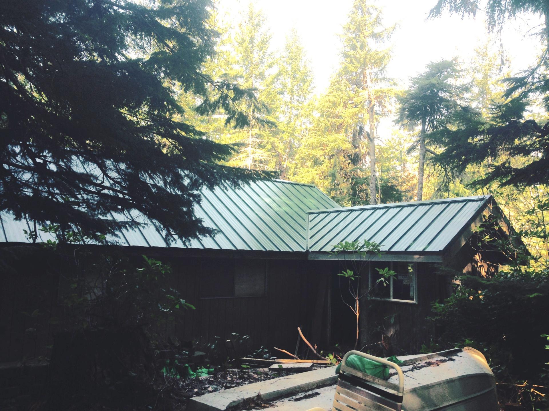 Metal Roofing Liliwaup, WA