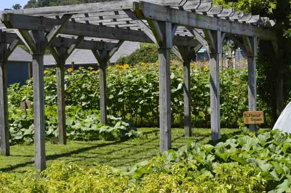 Garden SJ