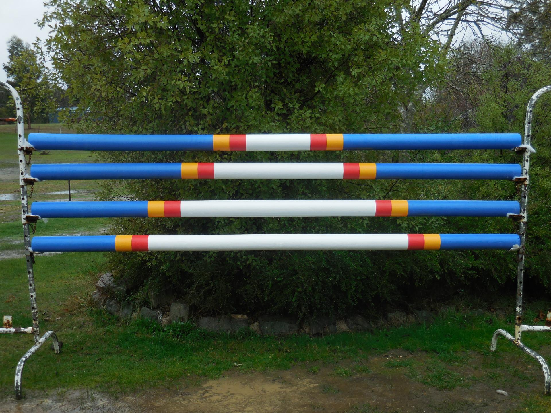 Horizon Show Jumps - Jump Poles