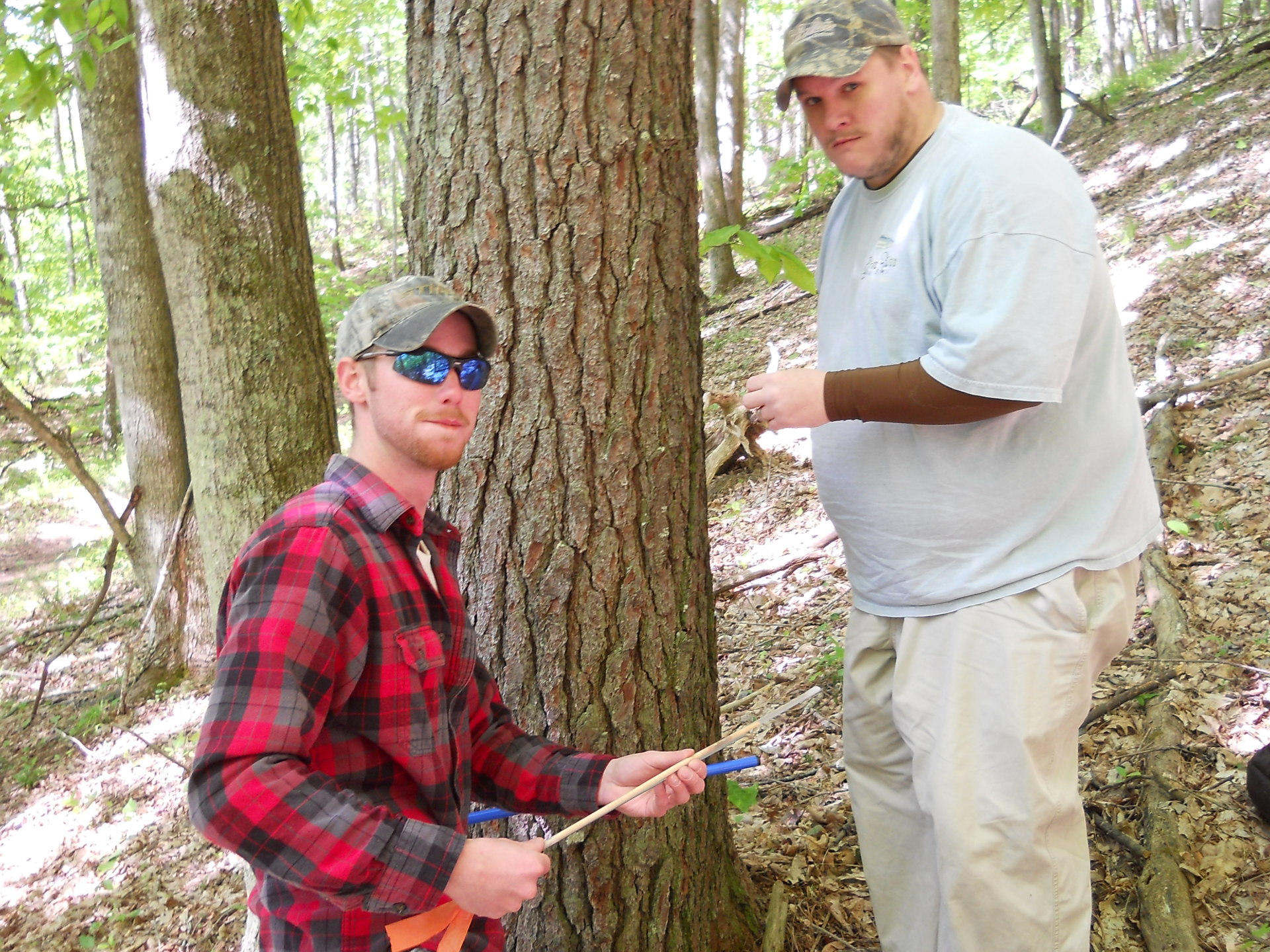 Dendrochronology Course - Summer Intersession 2014