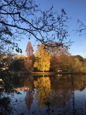Autumnal Riverside by Handserenity