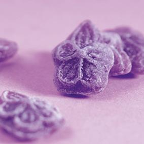 Violet Candy