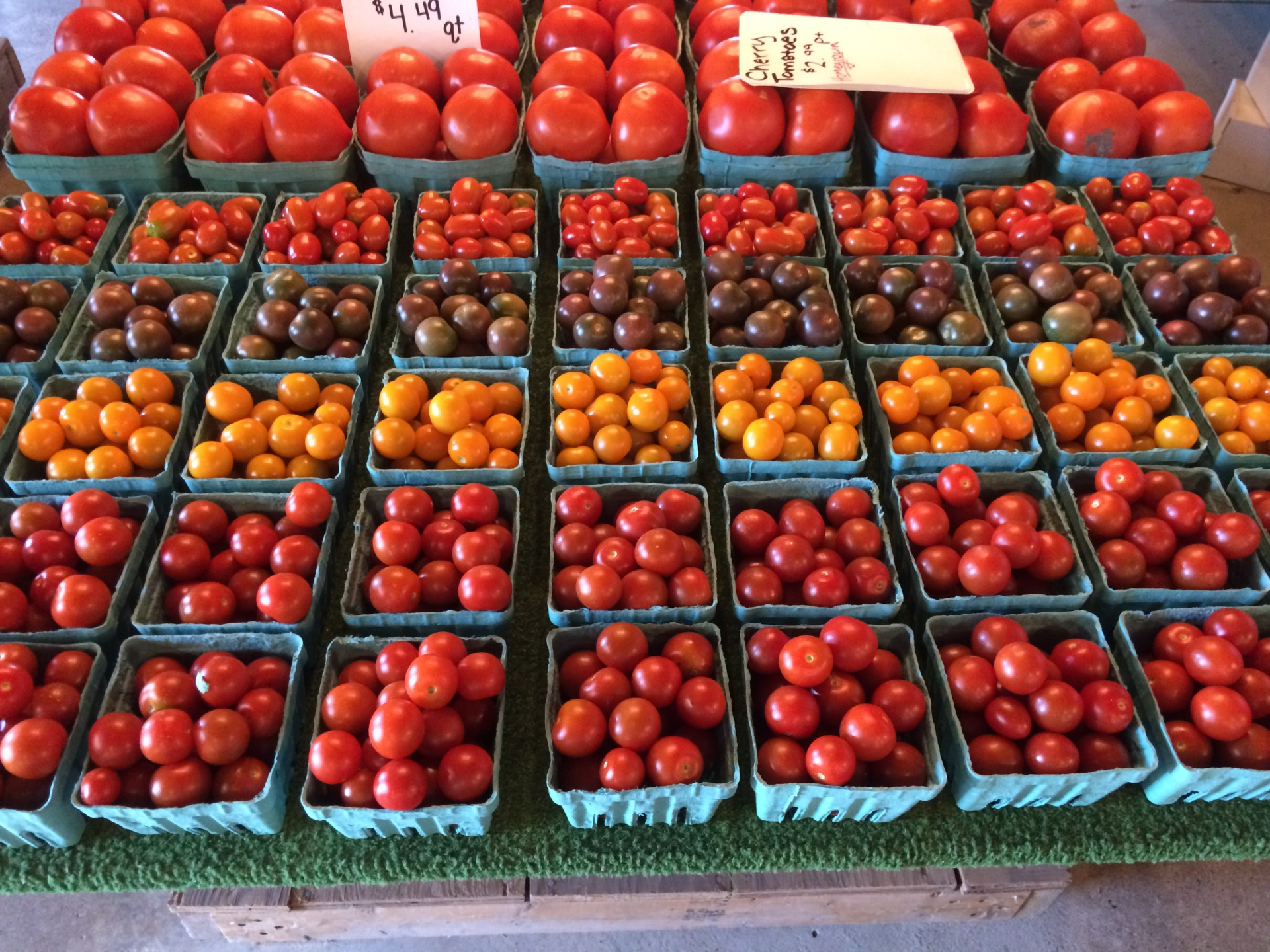 Cherry/ Grape Tomatoes