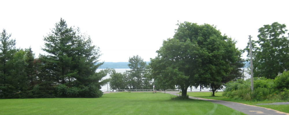 Cayuga Country Cottage lake view through trees
