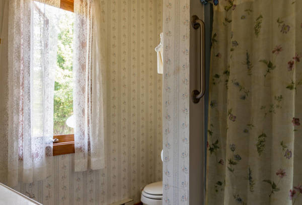 The down stairs bathroom includes full facilities.