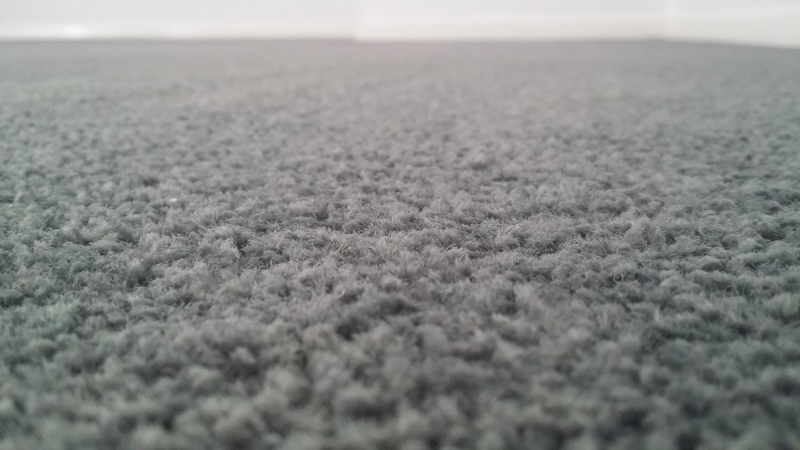 Carpet cleaning in bendigo