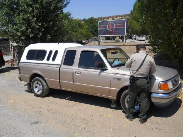 Empty Gas Tank Leads To Arrest.