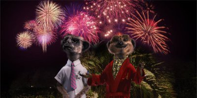 BONFIRE NIGHT WITH ALEKSANDR ORLOV  By: Darryl Ashton
