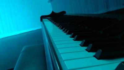 lovely pianist  ©ronald the poet
